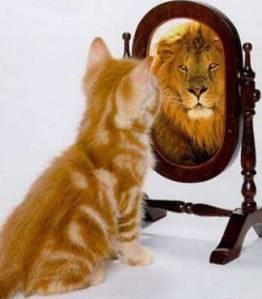 autoestima-gato-leon1